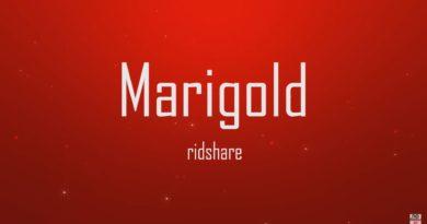 Marigold - Quincas Moreira