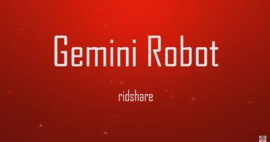 Gemini Robot - Bird Creek